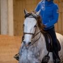 Barockes Reiten mit Richard Hinrichs 22-03-2014 - Lipizzaner Maestoso Alea