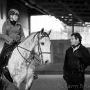 Barockes Reiten mit Richard Hinrichs 23-03-2014 - Lipizzaner Maestoso Alea