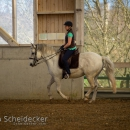 Barockes Reiten mit Richard Hinrichs April 2018