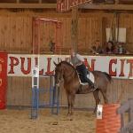 feria de caballo ibericoPullman City