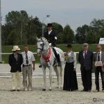 3. Lusitano-Festival  Zuchtschau und Körung für Lusitanos Dressurprüfungen für iberische PferdeAvenches Schweiz 2009