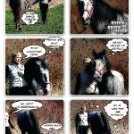 Situationen in einem Pferdeleben – Teil 4