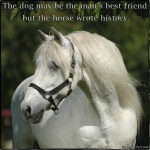 The dog may be the man's best friend - but the horse wrote histo