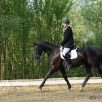 Dressurturnier Klaus 2011