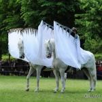 Feuerwerk der Pferde - Herrenhäuser Gärten in Hannover 2012
