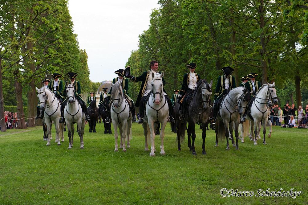 Herrenhäuser Gärten Feuerwerk Der Pferde 2013 Große Quadrille