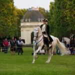 Herrenhäuser Gärten - Feuerwerk der Pferde 2013 - Solo Richard