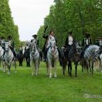 Herrenhäuser G&aumlrten - Feuerwerk der Pferde 2013